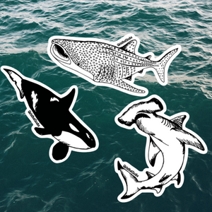 Pelagic Sticker Pack