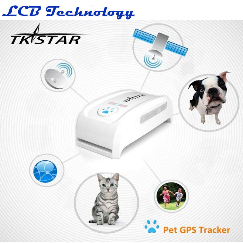 Collier GPS TK909 pour animal de compagnie