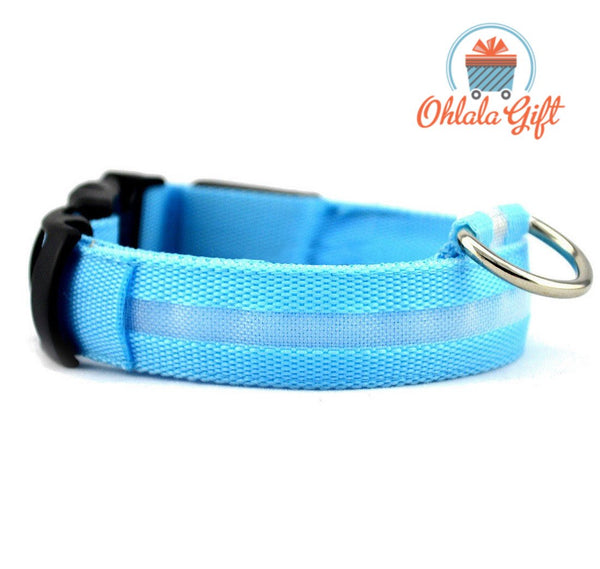 Collier LED chien - OhlalaGift.com