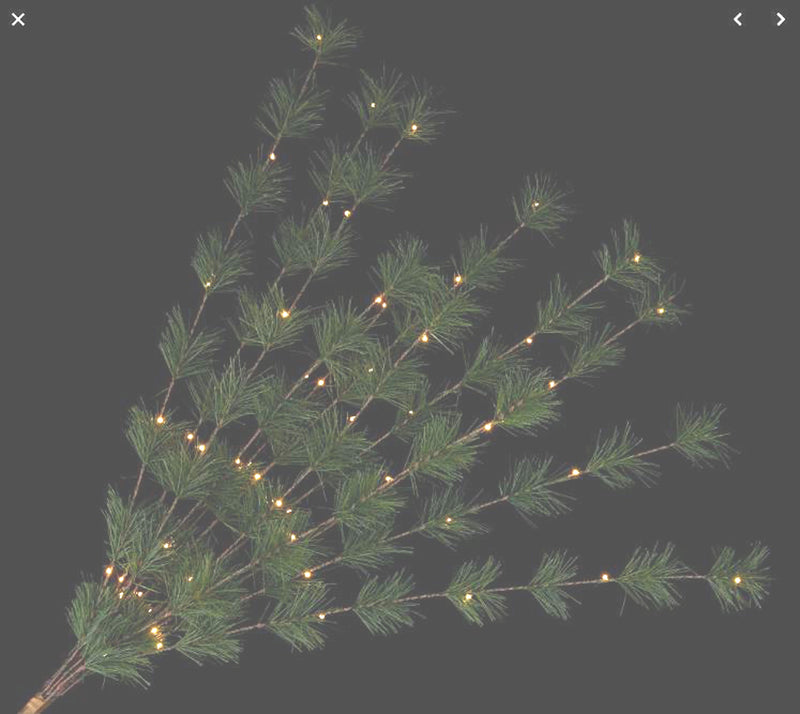 Bethlehem Lights Long Needle Spring Green H218196 - A
