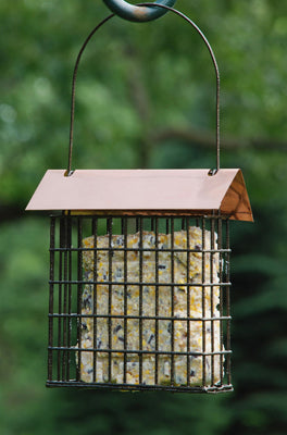Coppertop Single Suet Cage Feeder