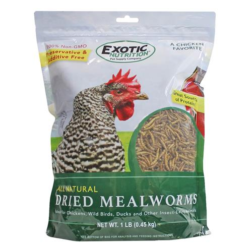 Exotic Nutrition Dried Mealworms
