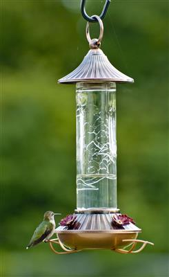 Embossed Glass Hummingbird Feeder
