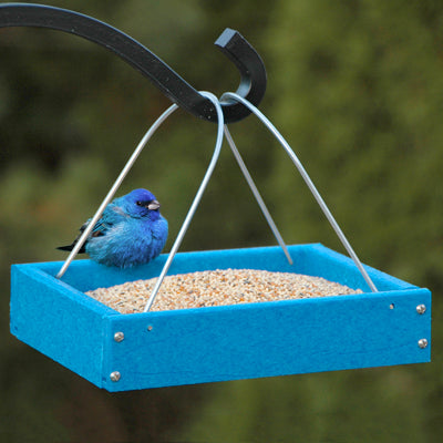 Going Green Small Platform Feeder - Blue