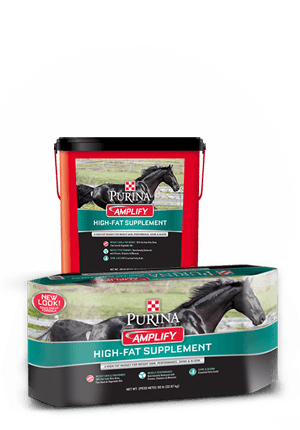 Purina® Amplify® High-Fat Horse Supplement