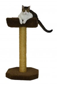 Molly and Friends Kitty Cot Cat Scratching Post with Cradle