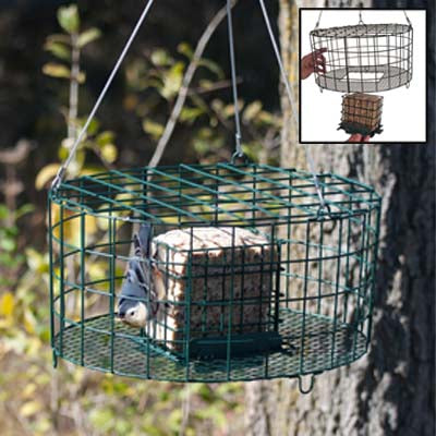 Squirrel Proof Double Suet Cage Feeder