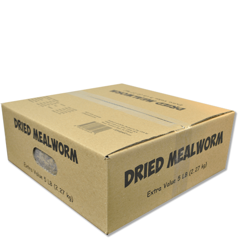 Dried Mealworms Value Box
