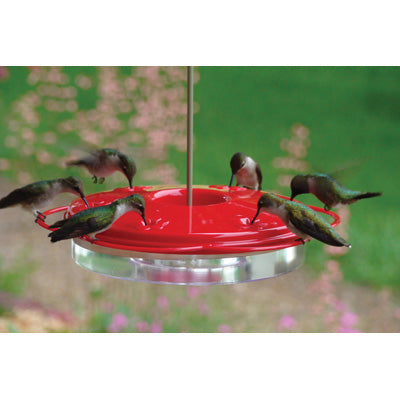 Plastic Hummingbird Feeder - 12oz