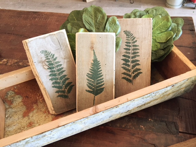 Fern Art Workshop