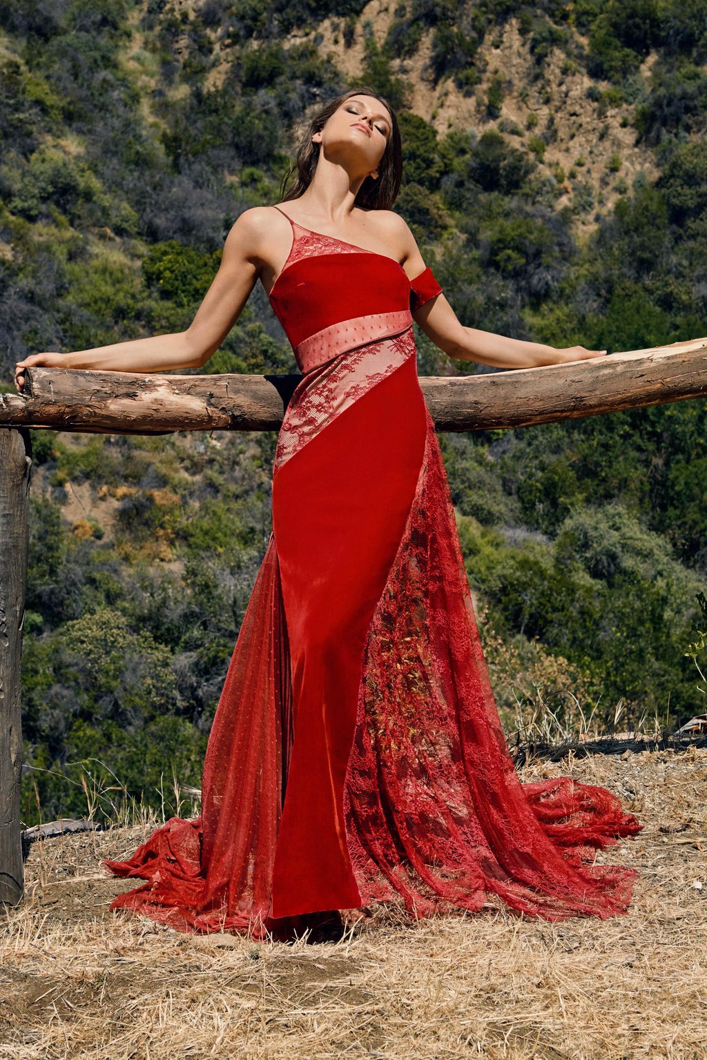 Liliana Velvet and Lace Gown
