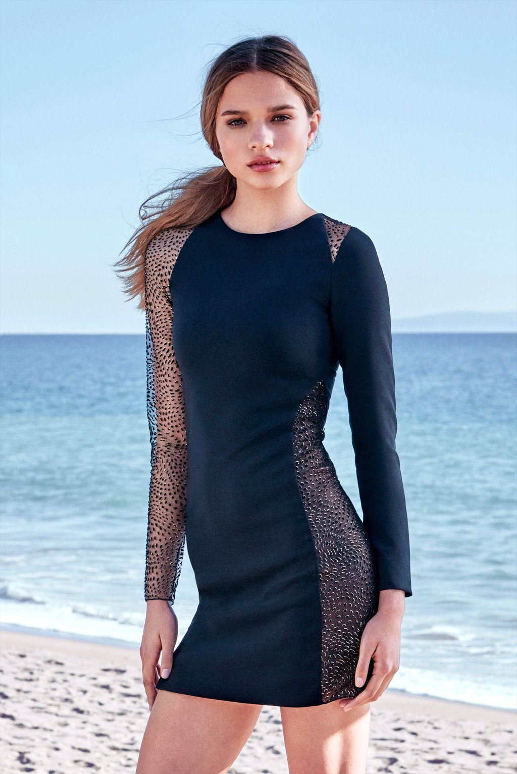 Irina Sheer-Sleeve Dress