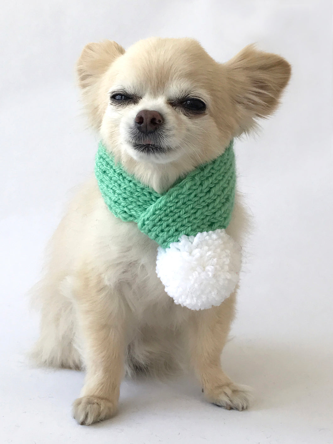 Hand knitted doggie pom pom scarf- Mint solid (varies sizes available)