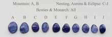 TANZANITE MAY CHECKOUT