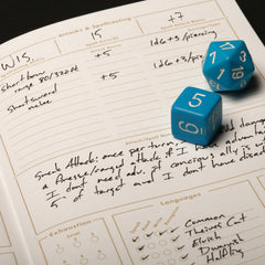 Field Notes 5E Gaming Journals Inside the Character Journal