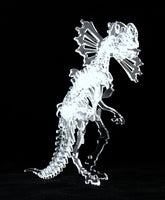 3-D Crystal Clear Ceratopsian Dinosaur Skeleton Puzzle