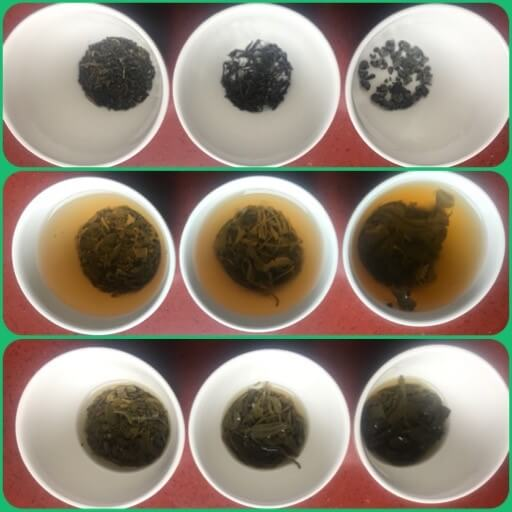 Green Tea, Black Tea, what is the difference?