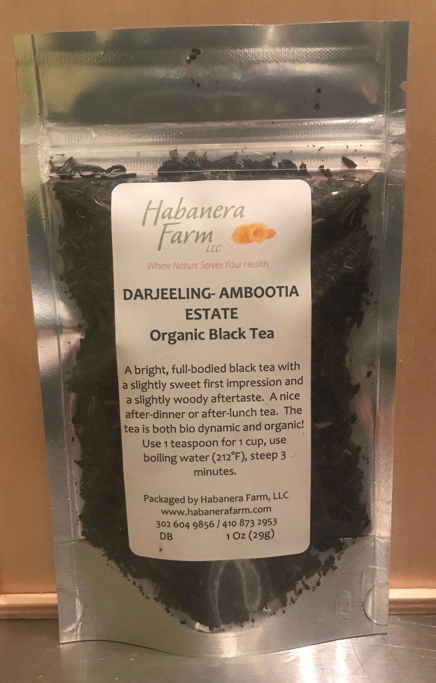 Darjeeling Ambootia Estate, black tea