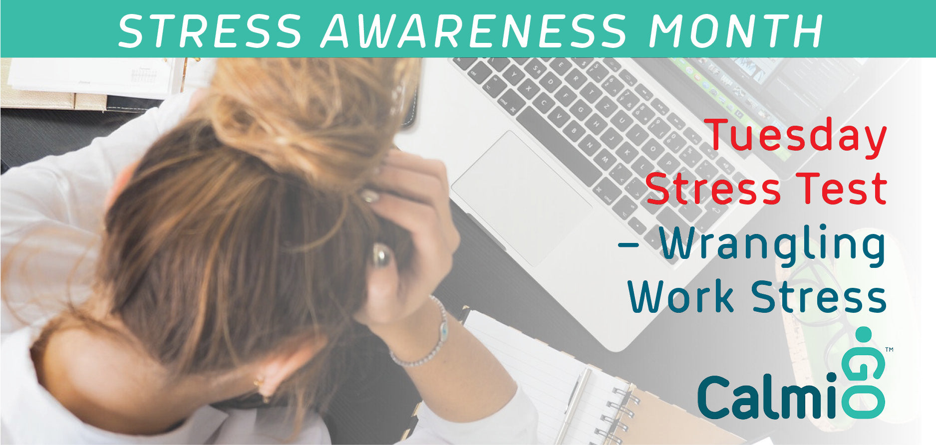 April 2 – Stress Awareness Month Tuesday Stress Test – Wrangling Work Stress