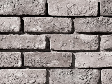 Special Used Brick Flats - Wolf Grey