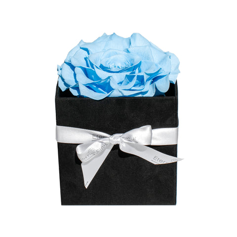 One Flower - Black Velvet Grand Square - Jumbo Rose - Black/x 1/Baby Blue