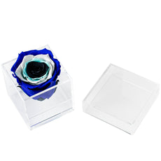 Back to School - Evil Eye Mini Bloom - Acrylic/x 1/Royal Navy