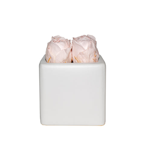 Four Season Peonies™ - Pink Peonies White Grand Square - Pink Peonies White Grand Square