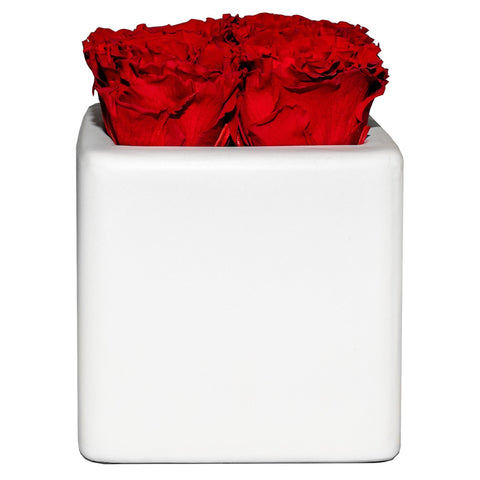 Four Season Fleur™ - Red Carnations White Grand Square - White/x 1/Red