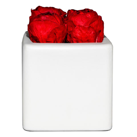 Le Jardin Collection - Red Peonies White Grand Square - white/x 1/red
