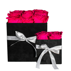 Gift Sets - Black Velvet Grand Square Bundle Set - Black/x 1/Dark Pink