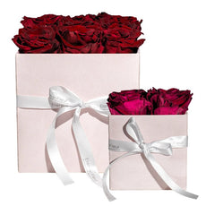Gift Sets - Pink Velvet Grand Square Bundle Set - Pink Pastel/x 1/Rouge
