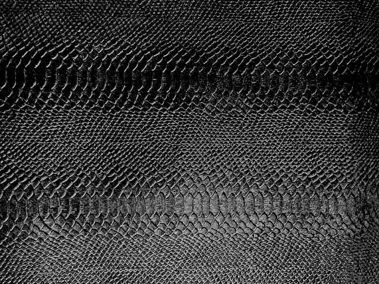 Embossed Python on Dyed Black