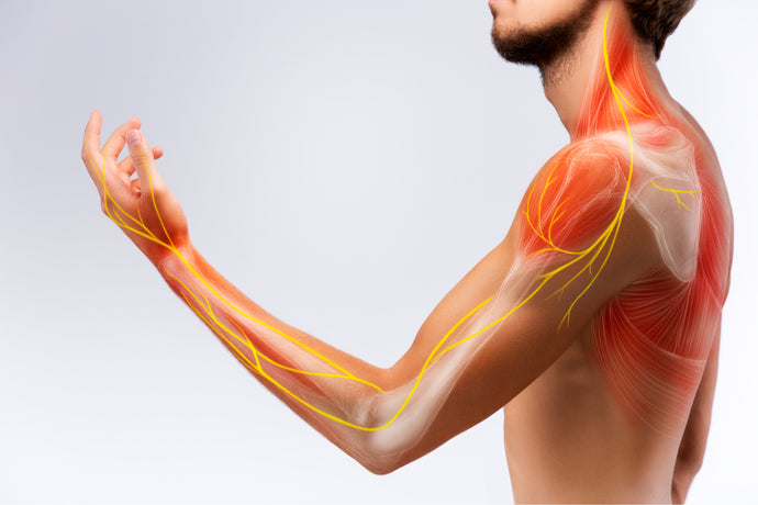 CBD, Nerve Pain & Neuropathy