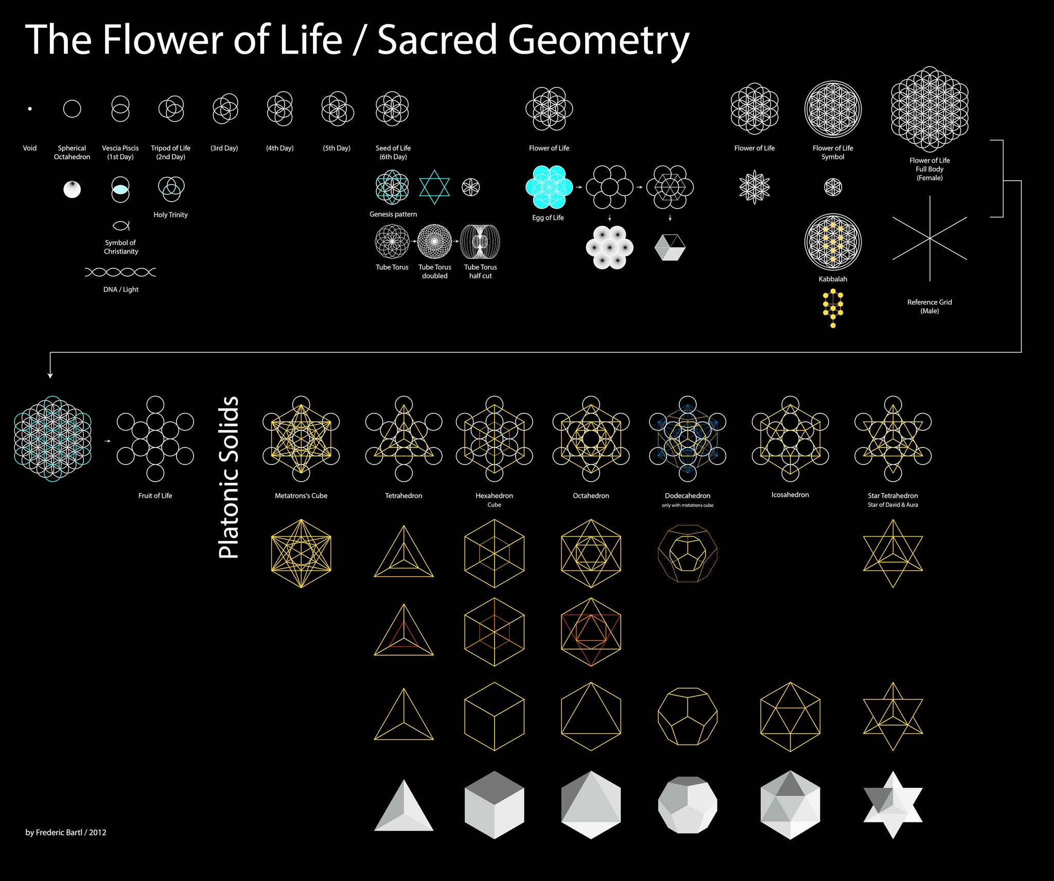 Beautiful Flower of Life Chart by Frederic Bartl