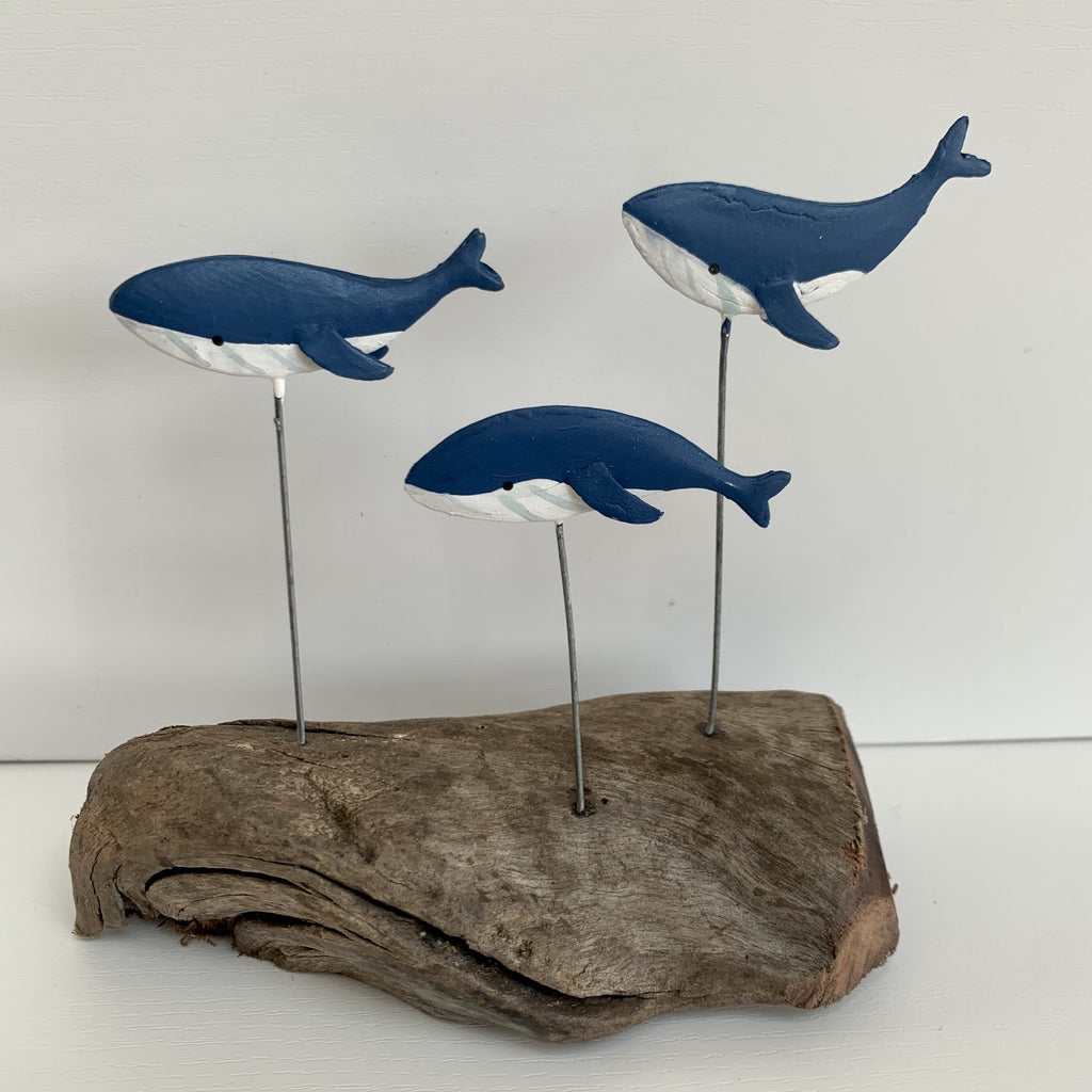 Blue Whales on Driftwood