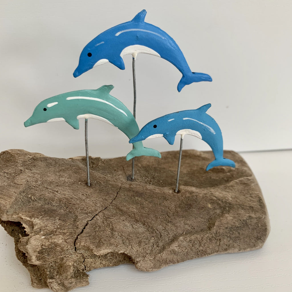 Blue Dolphins on Driftwood