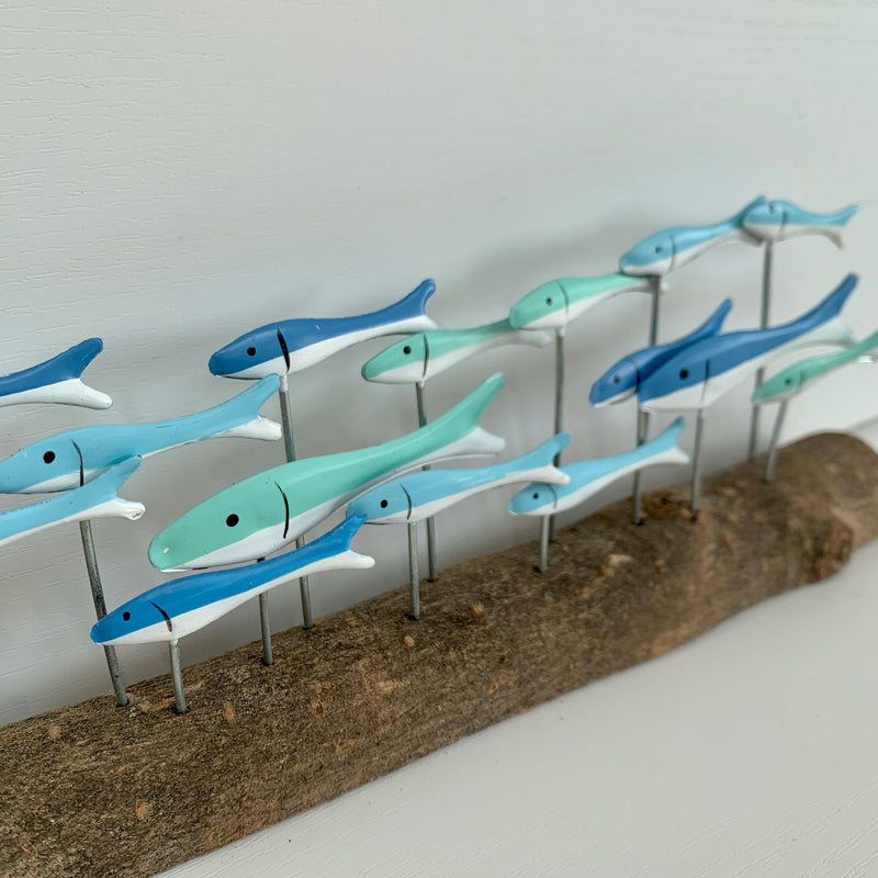 Long Row of Blue Fish Swimming