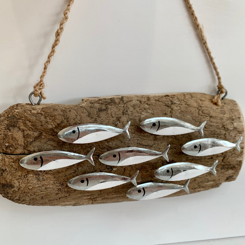 Hanging Silver Anchovies On Driftwood