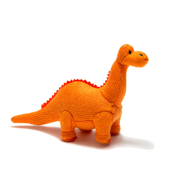 Baby Dinosaur Dippy Rattle Toy - Stars & Snuggles