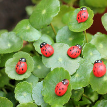 Artificial Ladybugs