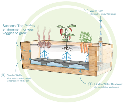 Self-watering system explained