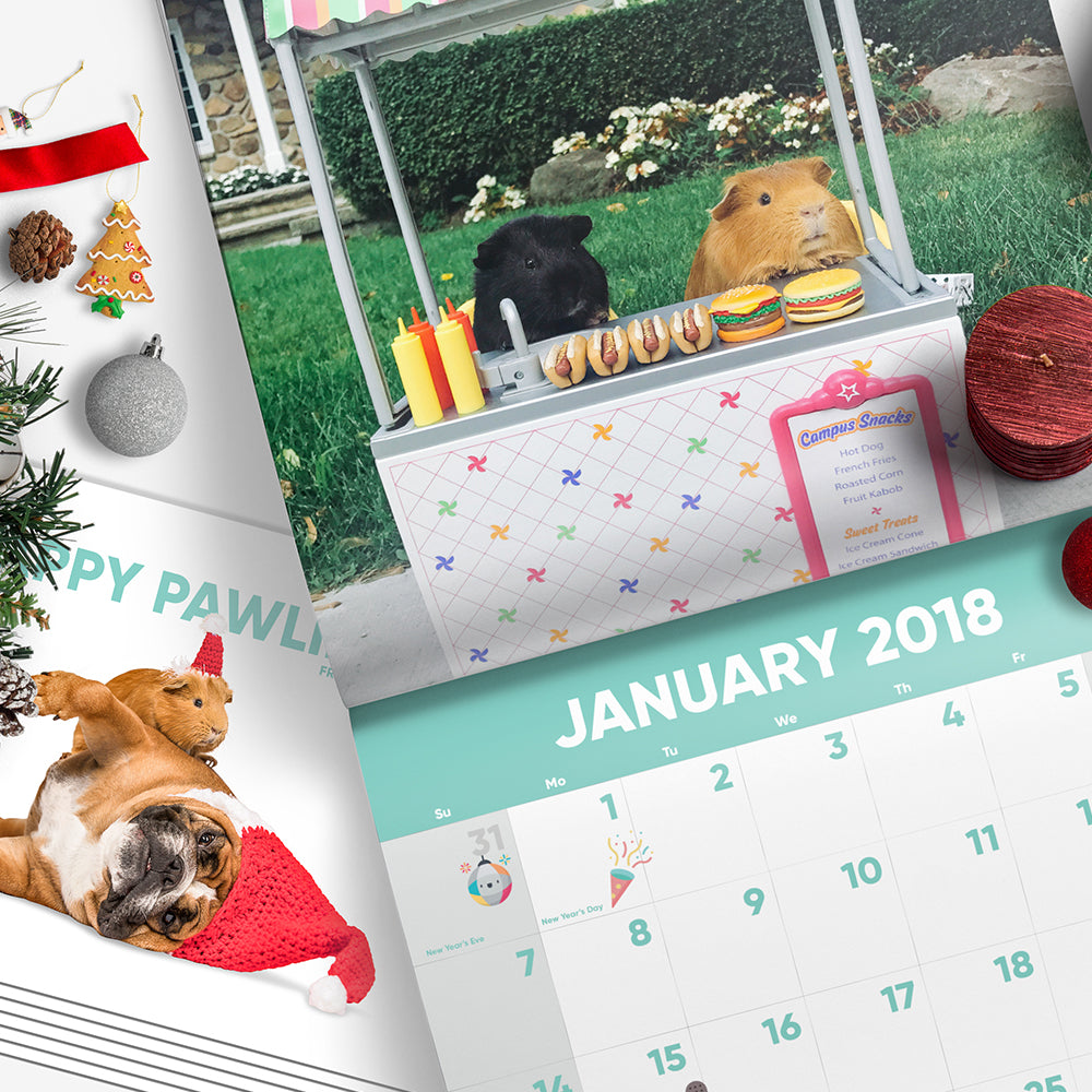 Furballs Holiday Bundle (Calendar + 6 Holiday Cards)