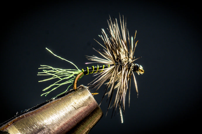 Dry Fly Selection and Rigging