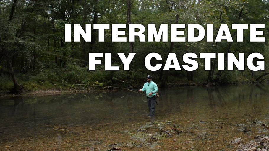 Intermediate Fly Casting