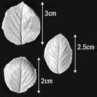 Great Impressions (SK) Leaf Veiners - Rose-Tea Rose, Small - set of 3 3cm/2.5cm/2cm GM01R004-05