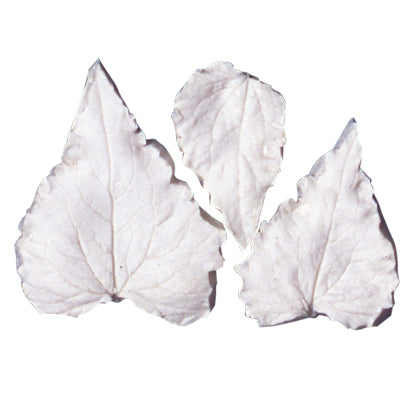 Great Impressions (SK) Leaf Veiners - Honesty - set of 3 5cm/3.5cm/3cm GM01H008-01