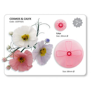 Cosmos & Calyx.  Jem Cutters
