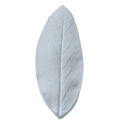 Great Impressions (SK) Leaf Veiners - Sage. Large. (65mm)  GM01S006-02