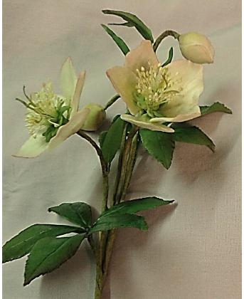 Christmas Rose Tutorial