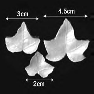 Great Impressions (SK) Leaf Veiners - Ivy-Succinata - set of 3 4.5cm/3cm/2cm GM01I002-22